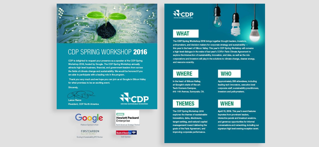 CDP Driving Sustainable Economies Brochures